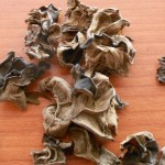Algas oreja de oso